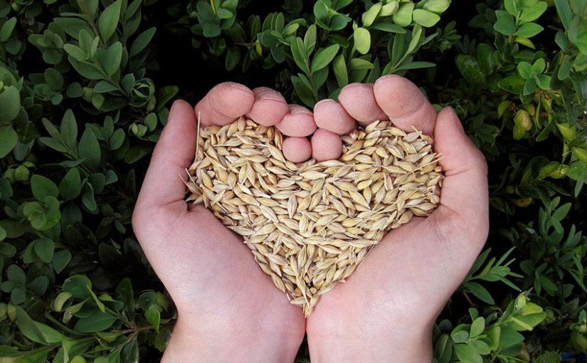 nutrizione cardionefrologia